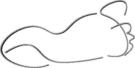 Podotherapie Fröhlich